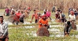 নাটোরের কানুজগাড়ি বিলের বাউত উৎসব