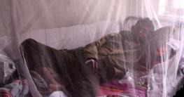 নাটোরে হঠাৎ করে ডেঙ্গু রোগী শনাক্ত