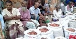 নাটোরের নলডাঙ্গায় পেঁয়াজের বাজারে ধ্বস