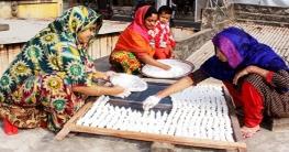 শীত মৌসুমে কুমড়ো বড়ি তৈরিতে ব্যাস্ত লালপুরের নারীরা