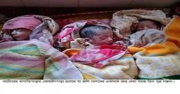 বাগাতিপাড়ায় যমজ তিন ছেলে সন্তানের জন্ম দিলেন জলি বেগম