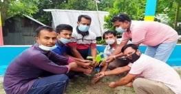 নলডাঙ্গায় বৃক্ষ রোপন কার্যক্রম শুরু করেছেন আলীম