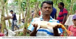 বাগাতিপাড়ায় টিকিট কেটে পুকুরে মাছ শিকার